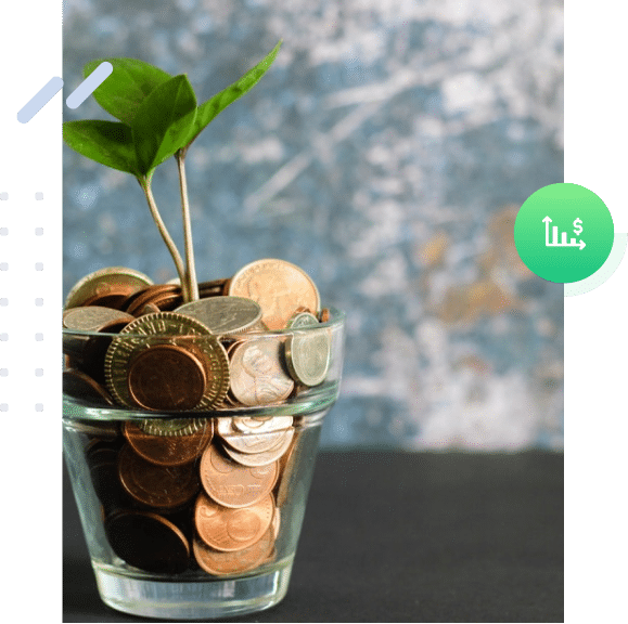 A small plant growing out of coins